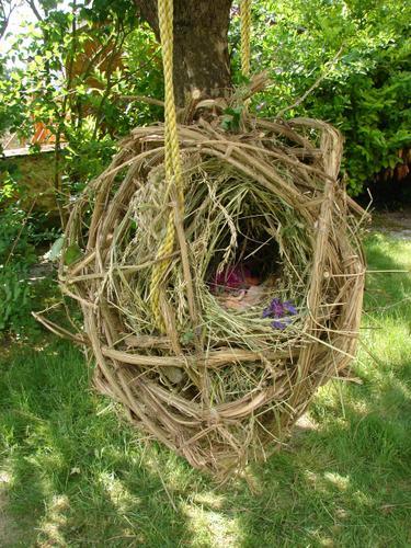 Autour des nids...